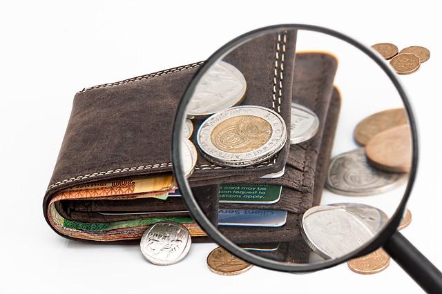 peněženka s lupou
